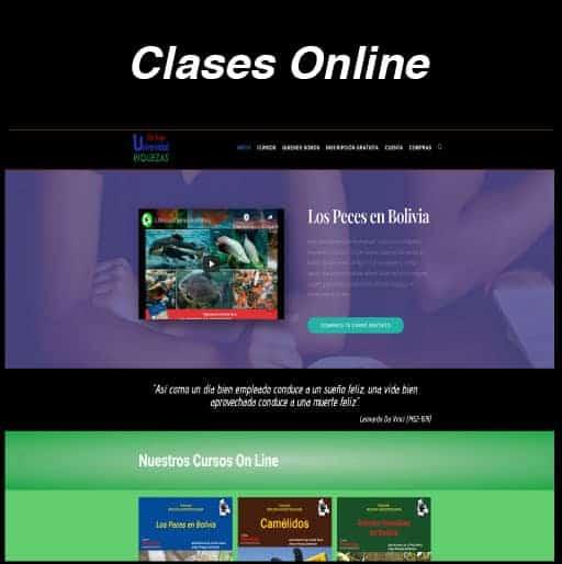 Web Clase Online