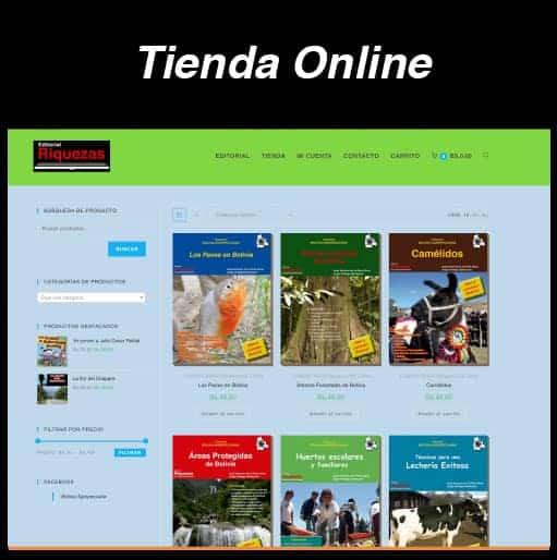 Web Tienda Online