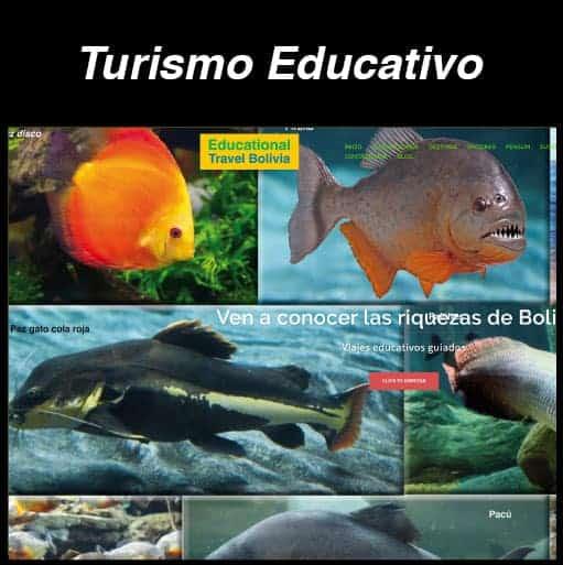 Web Turismo Educativo